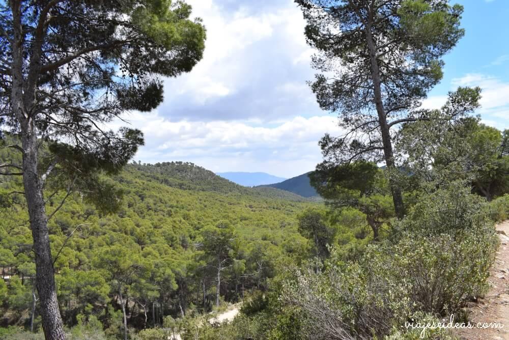 Senda del Dinosaurio, Sierra Espuña